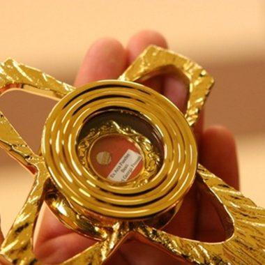 Przyjęcie relikwii Frassatiego